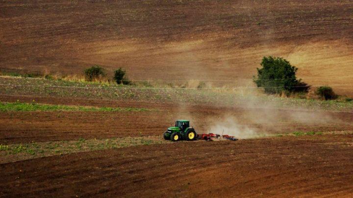 A hazai mezőgazdaság válságálló, de a koronavírus-járvány fokozódása gondokat okozhat
